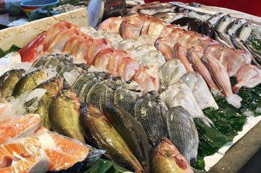 飲食作家葉怡蘭/走入漁港,領會島嶼海鮮的豐富與燦爛
