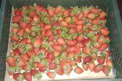草莓一籃只要80元真的這麼便宜嗎? 網友曝真相:要小心