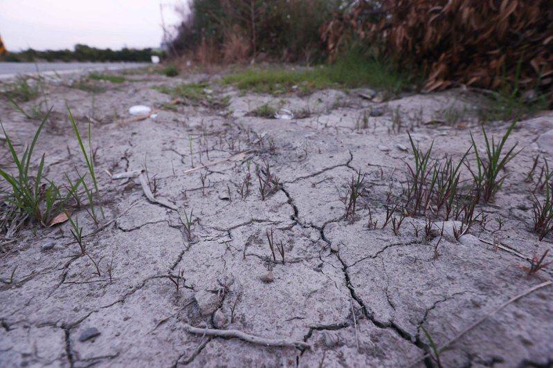 國內旱象未解,水情吃緊,農田水利署攜手大甲鎮瀾宮辦祈雨法會,盼度過缺水難關。記者黃仲裕/攝影