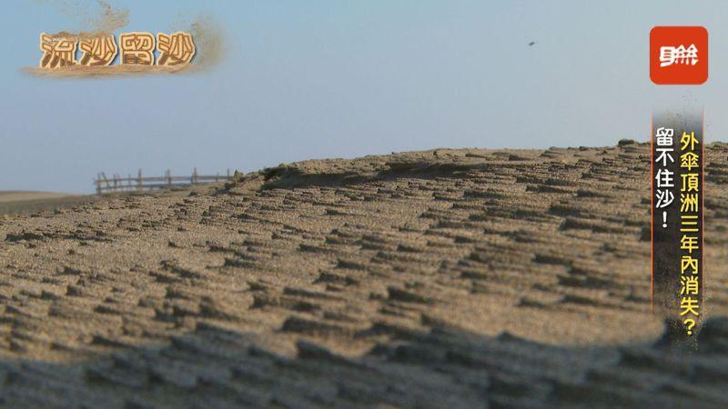 外傘頂洲為台灣沿海最大的沙洲,一直都有要沒入海平面的危機,1993年面積3167公頃,2019年只剩下1147公頃,較1993年減少了6成多的面積。記者陳煜彬/攝影