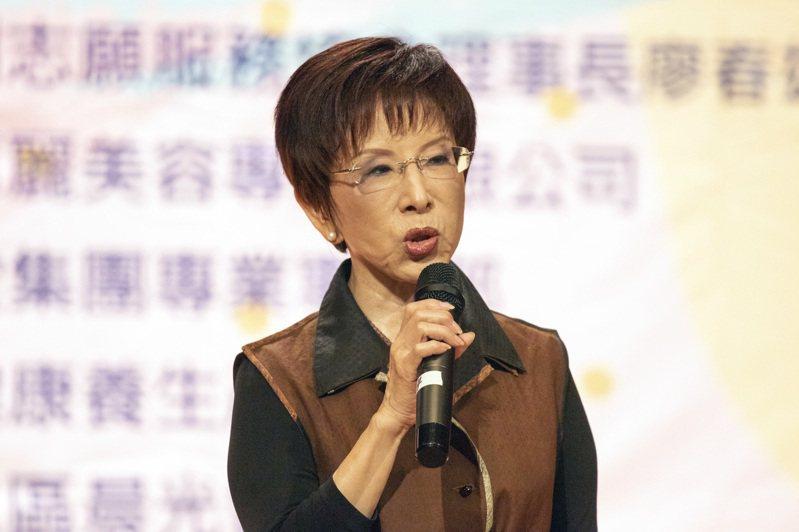 國民黨前主席洪秀柱。圖/本報資料照片