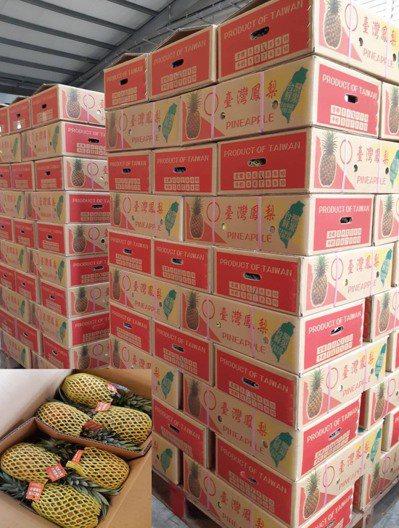 京城銀力挺鳳梨農。京城銀/提供。