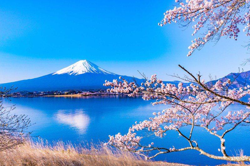 正對富士山,春天正適合漫步河口湖旁的長崎公園,靜靜感受日式禪意的美。 圖/Agoda提供