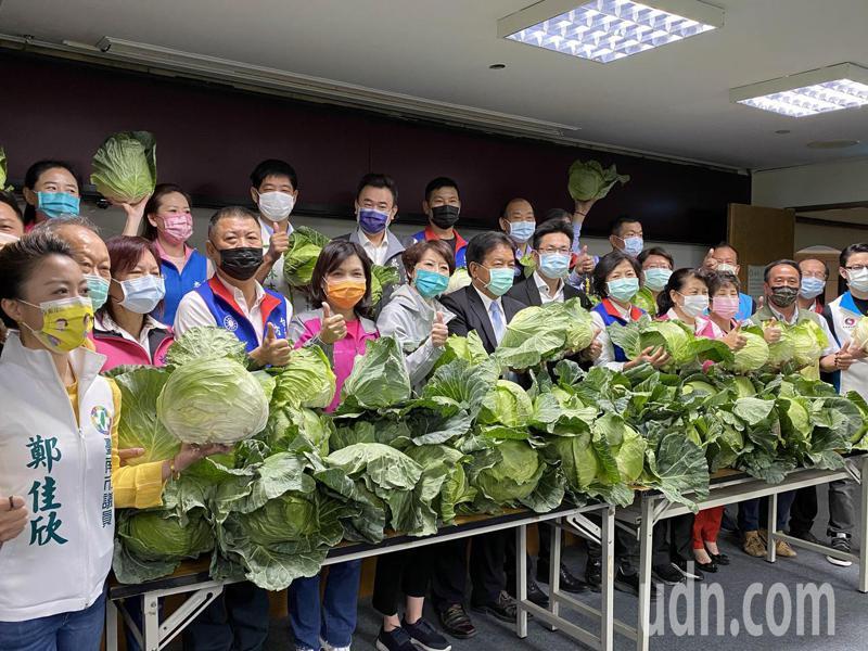 台南市議會採購9萬斤高麗菜免費贈送給民眾。記者修瑞瑩/攝影