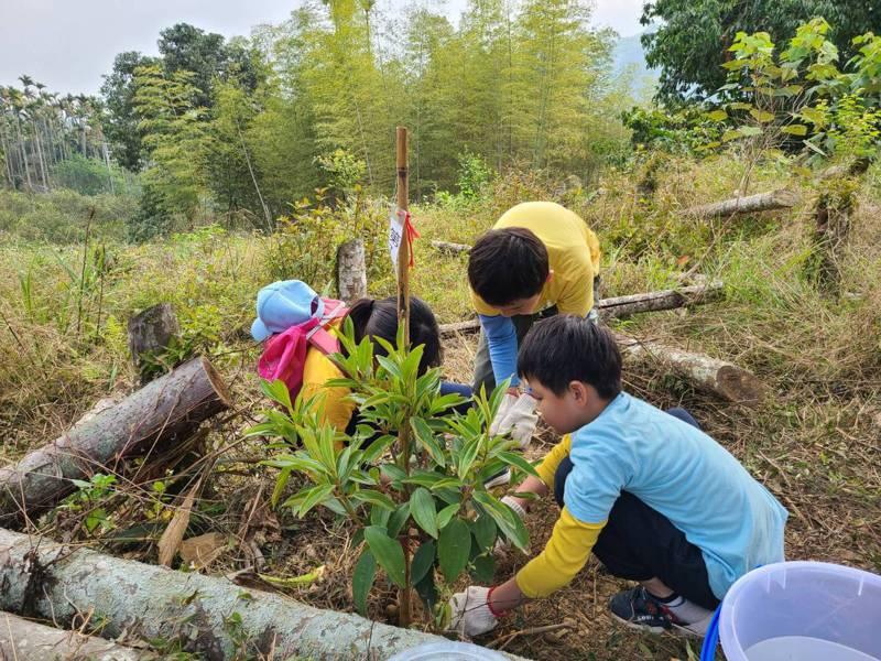 竹山鎮預計3年種下3000棵牡丹花,努力打造山城野牡丹世界,讓大鞍成為杉林溪第二的賞花景點。圖/竹山鎮公所提供