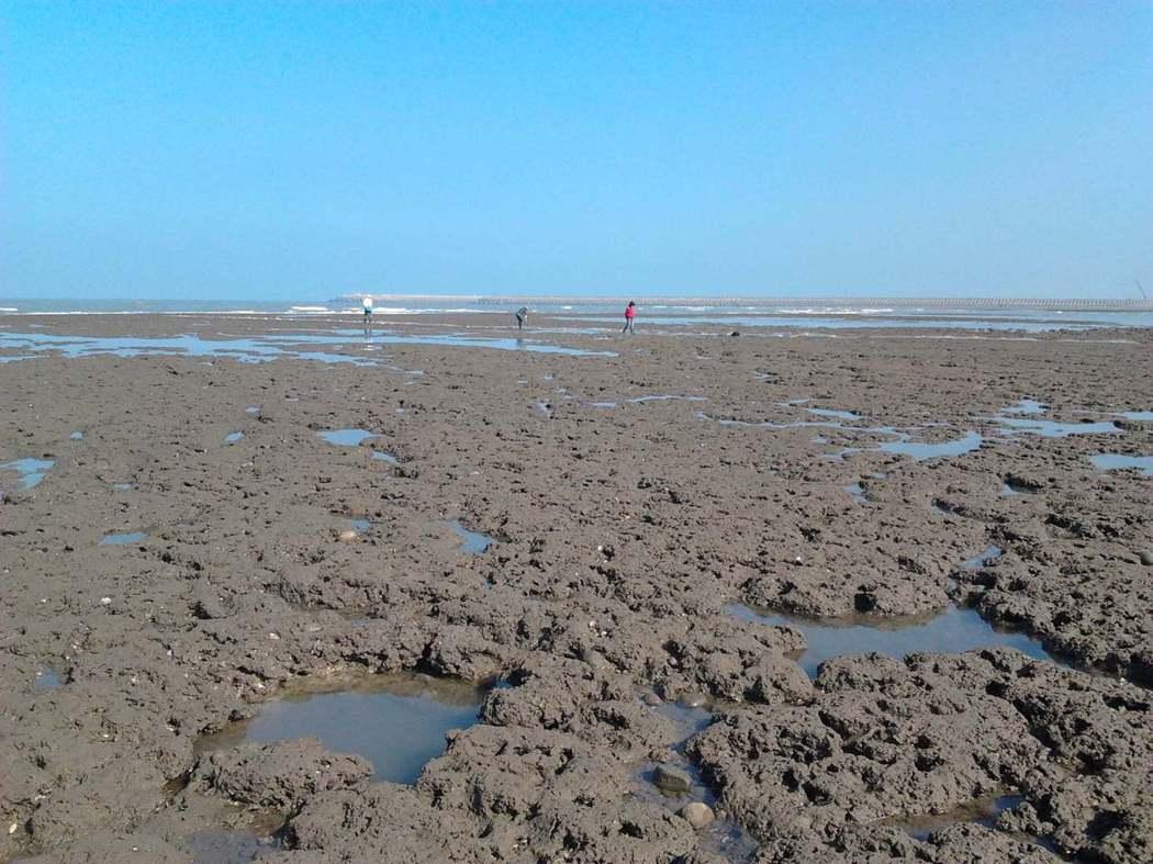 圖是我2012年第一次看到藻礁時所拍下的風景,上面可見有居民在做採集