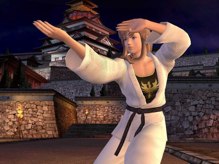 降低頻率後的顯卡依然滿足了《生死格鬥3》的需求