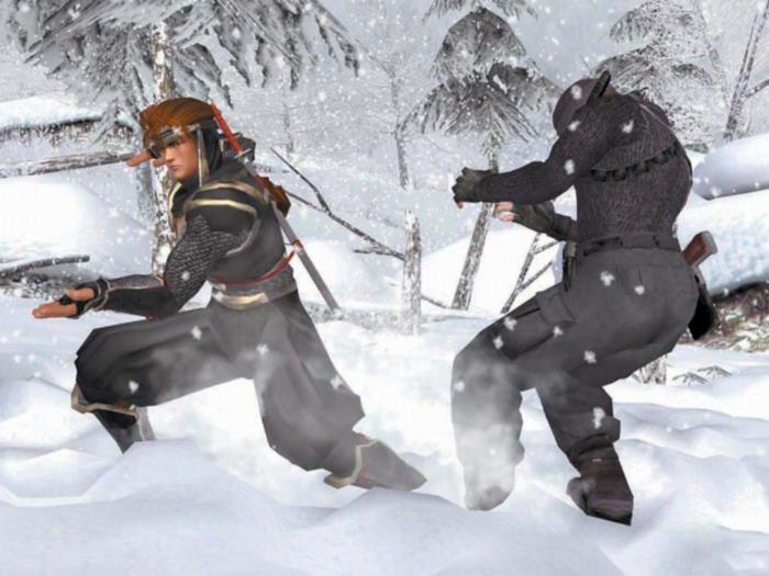 《生死格鬥3》的雪景