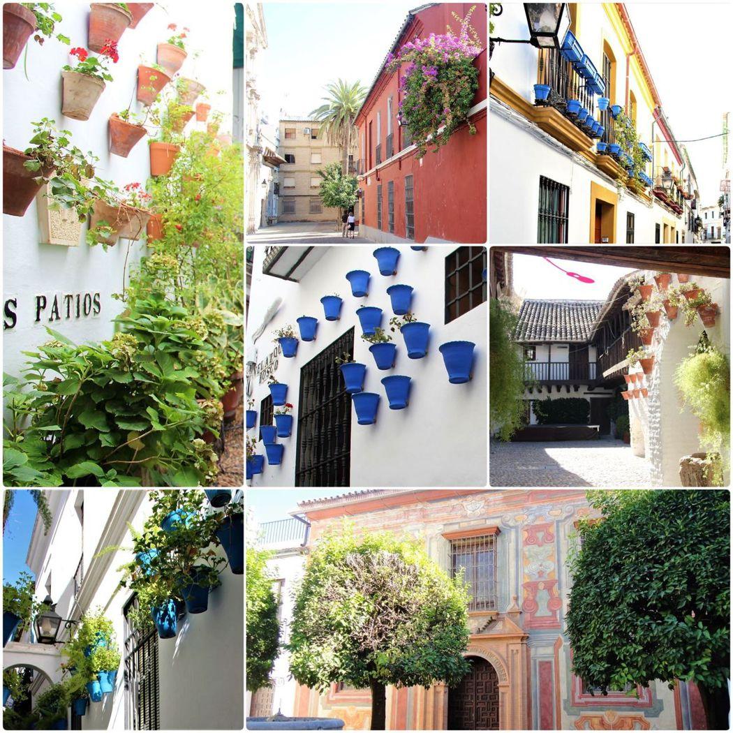 雖然不是在5月的節慶時間到訪,卻也能一窺庭院露台文化的迷人之處。