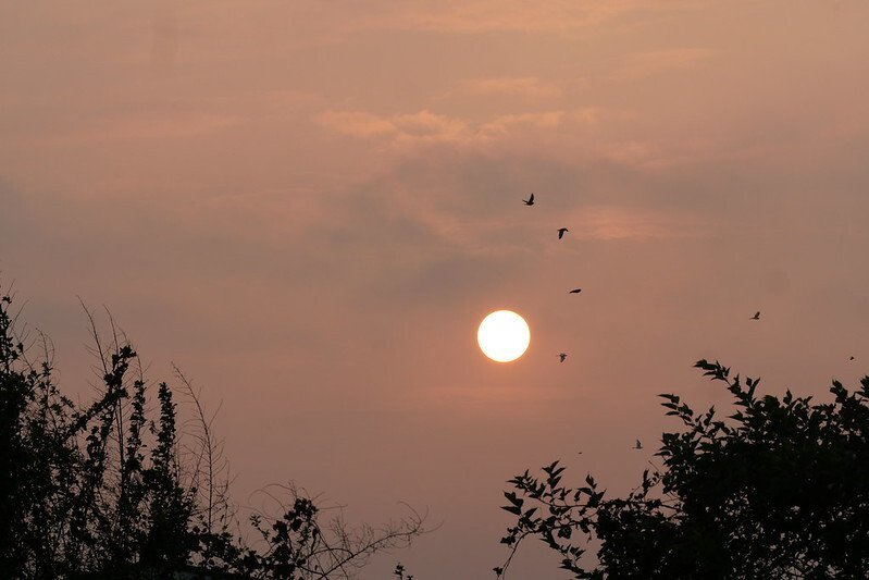 夕陽西下,天色漸黑,是回家的時候了。
