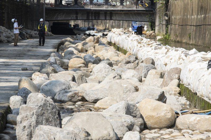 新北水利局用砌石營造自然河溪景象,前幾日因為大雨,藤寮坑溝出現烏龜優游其中。記者王敏旭/攝影