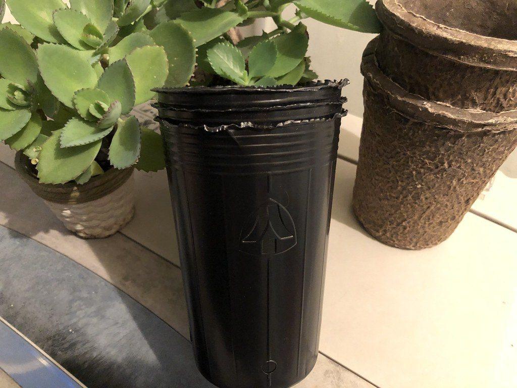 嘉義林管處與業者研發,以竹粉和植物纖維等材質做成的苗盆。 圖/廖靜蕙 攝影