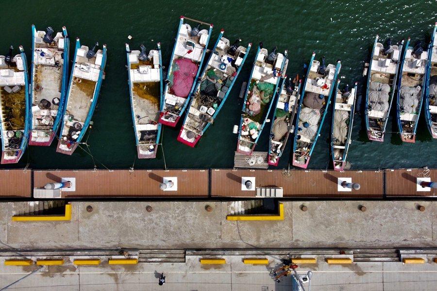 開發業者往往未能有效運用地方補償金,無助於解決海域開發後對在地漁民的生計影響。 圖/法新社