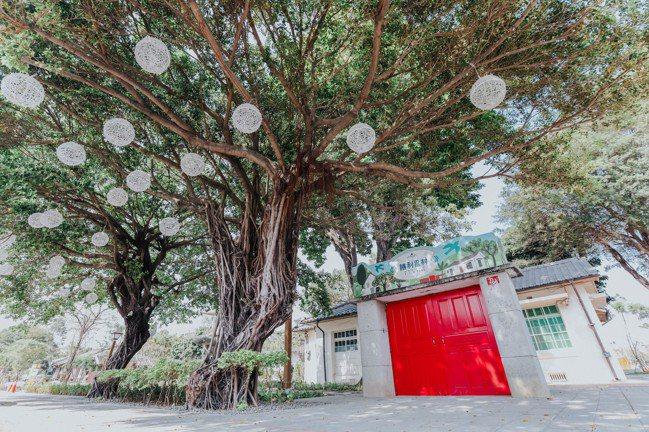 勝利星村改建時,大樹全數保留。記者吳致碩/攝影