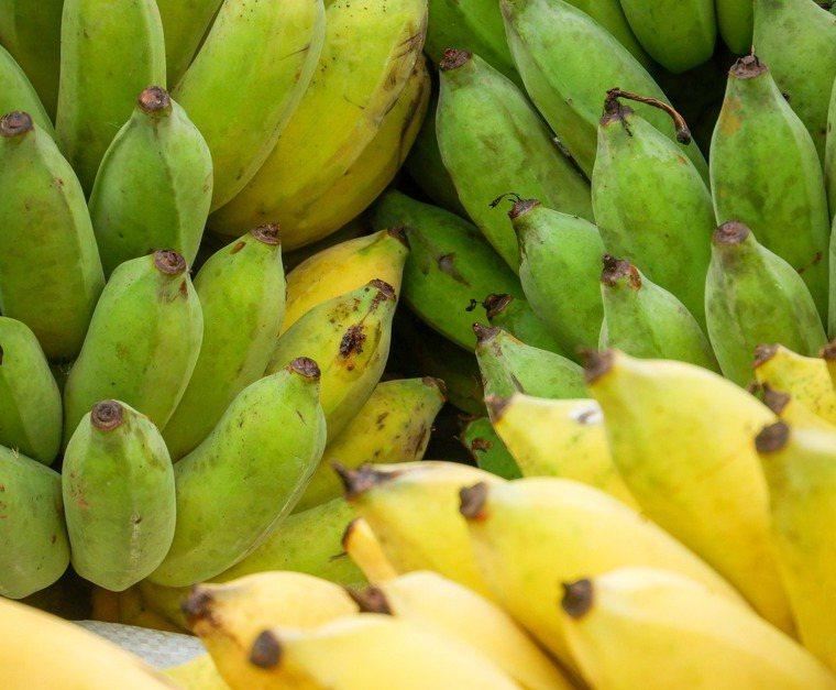 黃、綠皮香蕉。圖/ingimage