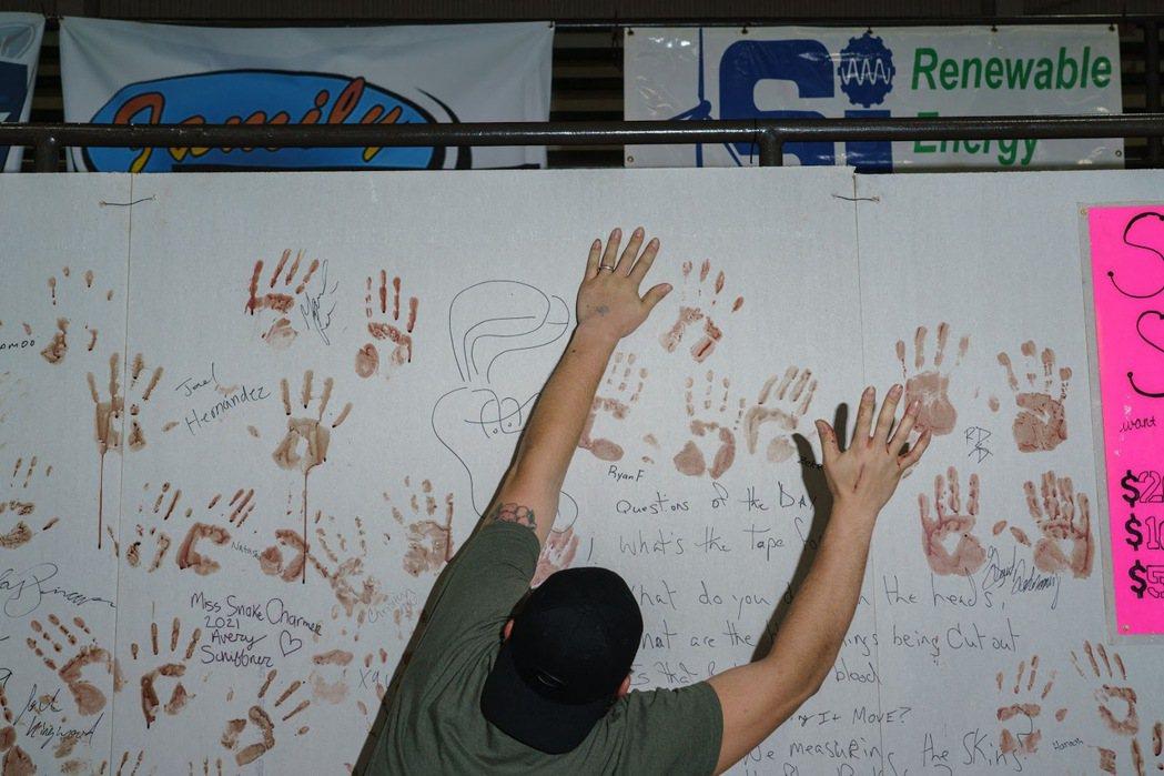 參與者在參與剝開蛇皮的環節後,在牆壁上留下其手掌印記。 圖/法新社