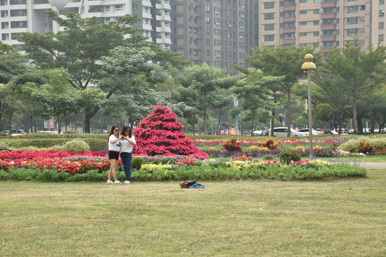 為了避免視力繼續惡化,我每天下午到附近公園散步,賞花兼護眼。圖/鍾亮恩提供