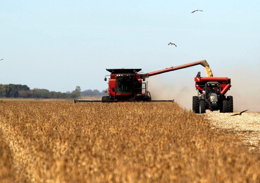 南美洲異常天氣使全球黃豆供給存有高度不確定性,加上美國黃豆供給正進入尾聲,當地黃...