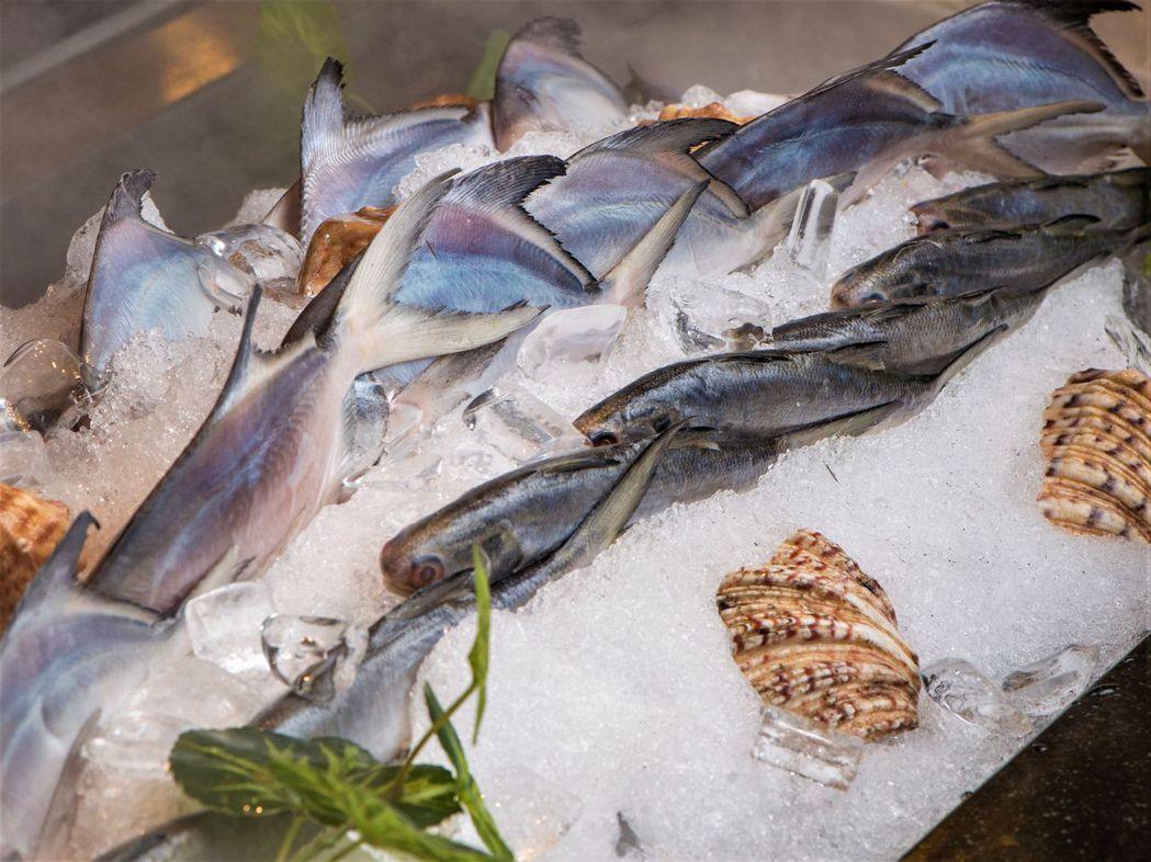 鮮魚及現流魚整尾夾走,現場料理,非常霸氣!  台南大飯店/提供