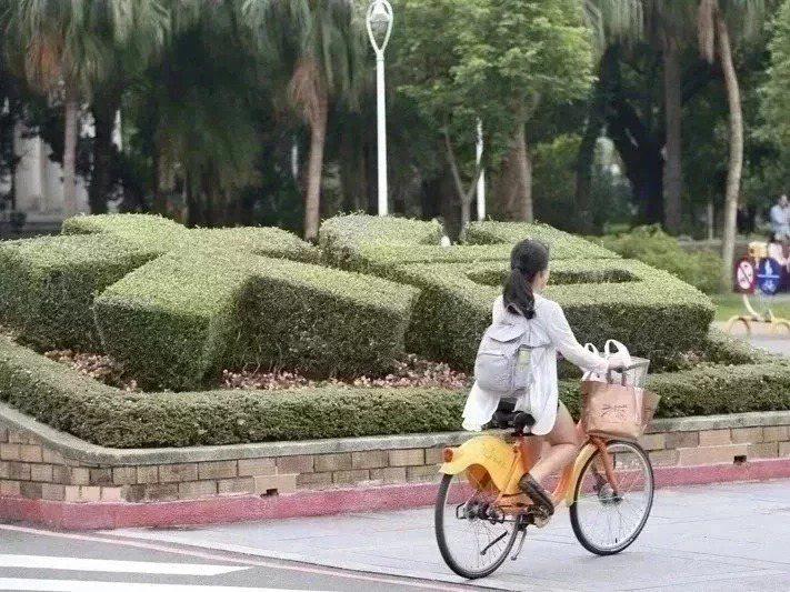 110學年繁星推薦錄取名單今天出爐,台灣大學釋出346個招生名額,錄取率60.8%。本報資料照片