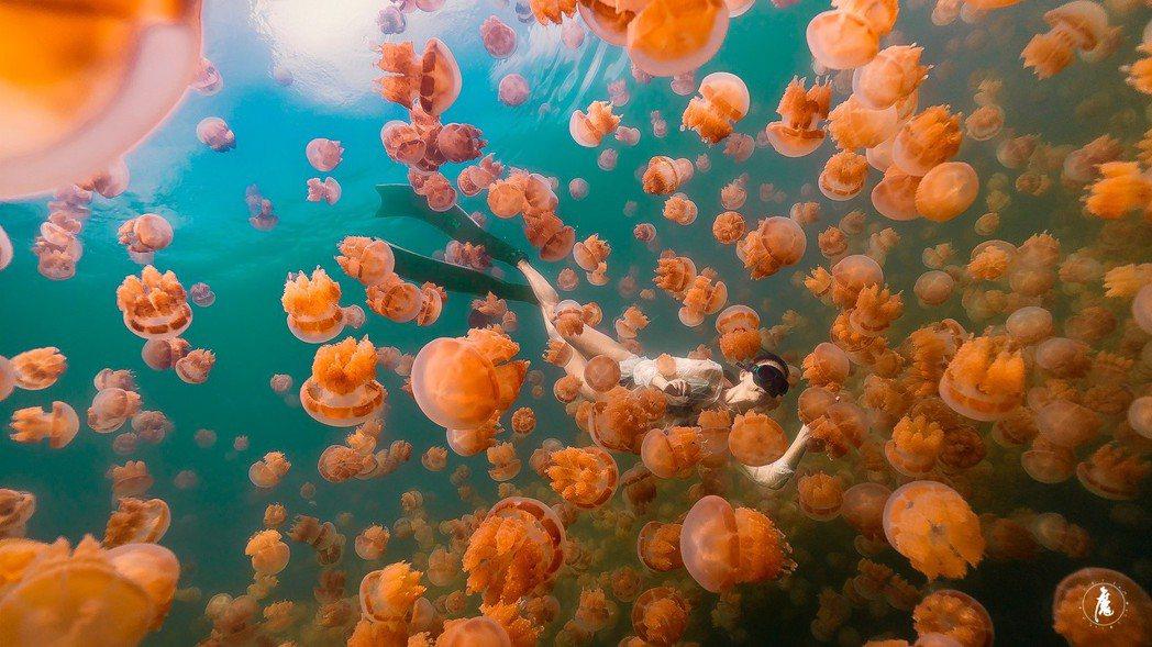 圖為水母湖。圖/ KKday提供