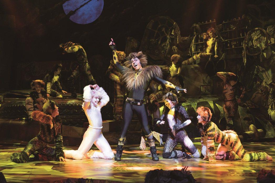 音樂劇「貓」6度重磅登台 。圖/寬宏提供