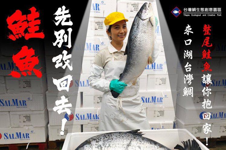 圖/台灣鯛生態創意園區臉書專頁