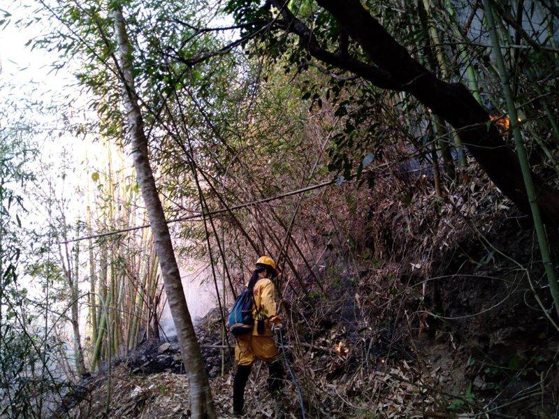 阿里山大火林管處森林救火隊攀爬垂降與惡火搏鬥。記者魯永明/翻攝