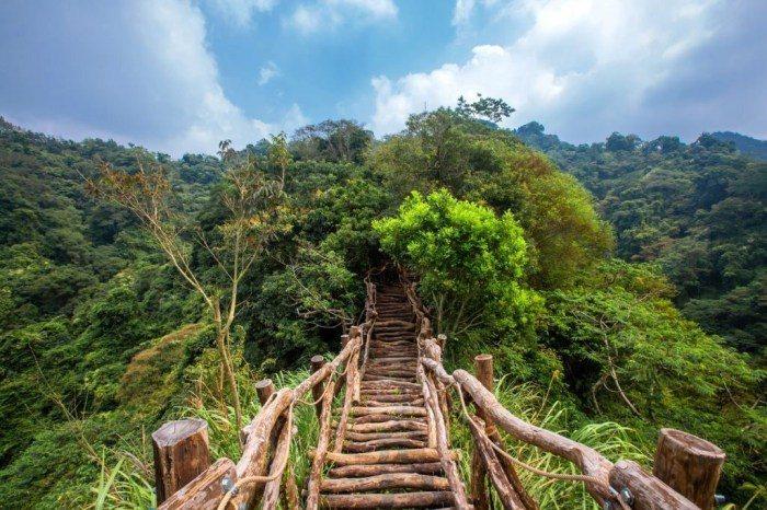 大坑風景區共有10條登山步道,每條步道的難易度、距離都不同,不過登上山頂後的視野...