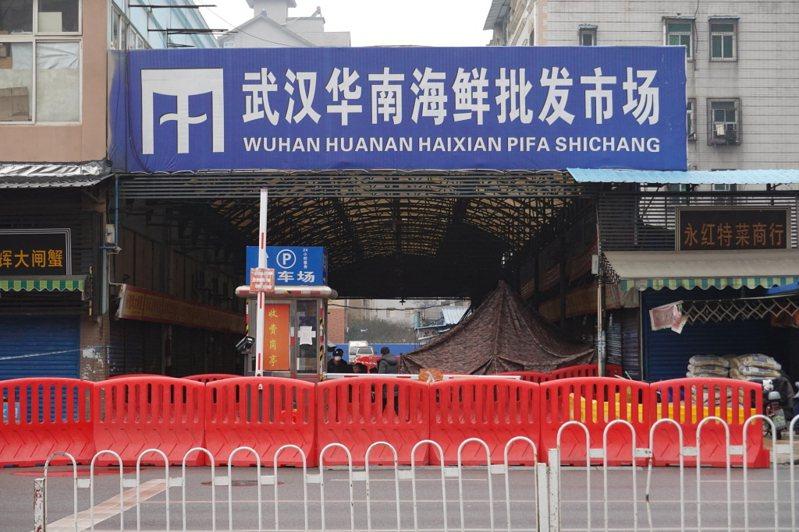 華南海鮮市場。 圖/取自《新京報》