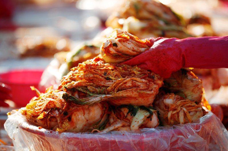 南韓泡菜消費量領先全球,圖為韓國婦女醃製泡菜。路透