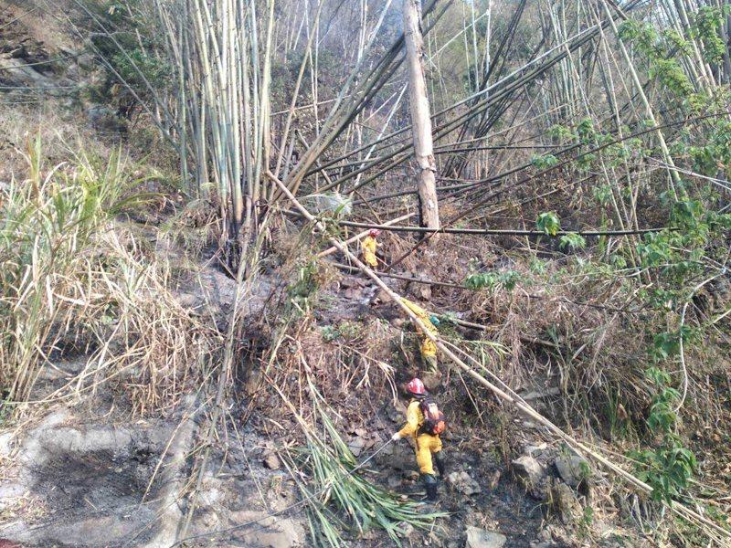 延燒五日的阿里山公路林班地火災昨下午3時20分撲滅。圖/林務局提供