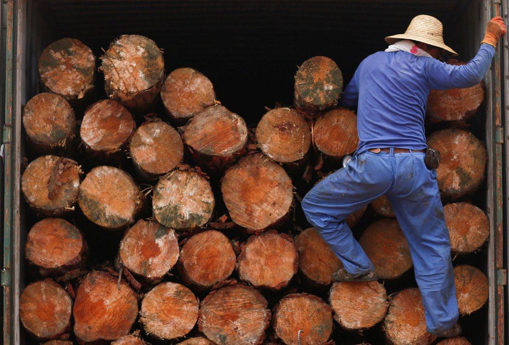 木材、紙漿期貨近期雙雙上漲,反映通膨迅速回升的可能性。電商強勁增長,也帶動紙箱需...