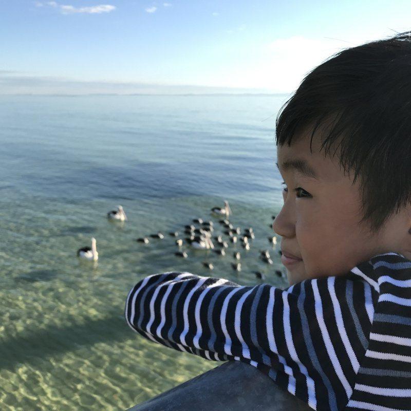 台灣帛琉旅行泡泡首發團預計將於4月1日成行,保險公司推出專屬旅行泡泡綜合保險,五天四夜行程保費為2,534元。 圖/資料照片