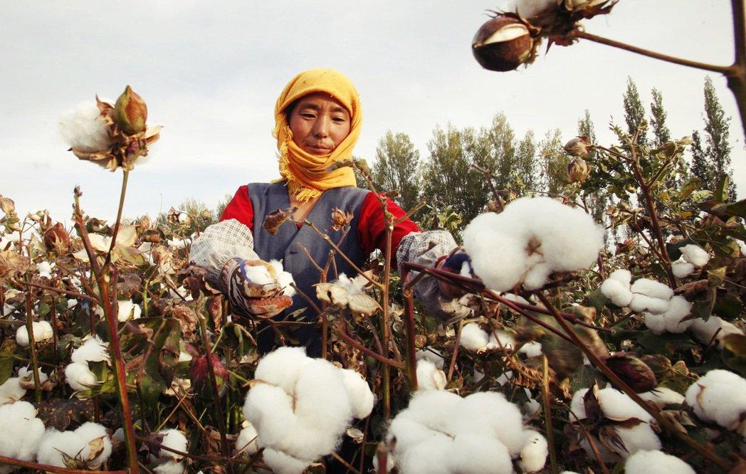 國際服飾品牌H&M在去年發表的聲明「不用來源有疑慮的新疆棉」,沒想到在今年3月突...