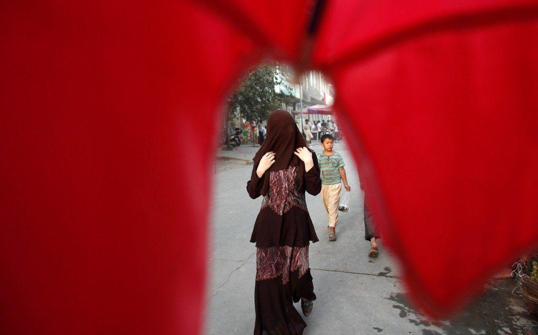 哈瑞認為中央或新疆當局可能並沒有下達性侵、輪暴維吾爾婦女的命令,然而「他們提供了...