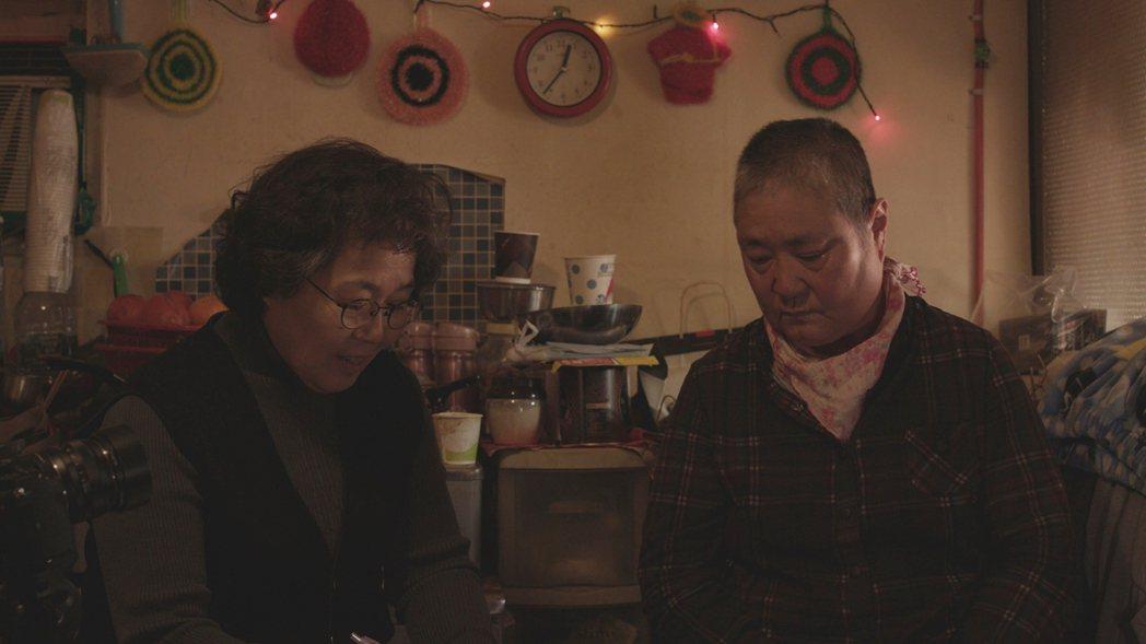 《鬼怪與懷孕的樹》片名取自於主角朴仁順(박인순)奶奶的一幅畫。小時候因為戰亂被遺...