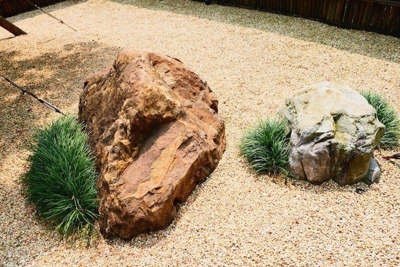日式庭園裡,常見也一定會有的,石頭縫裡長出來的小花小草類的植物。