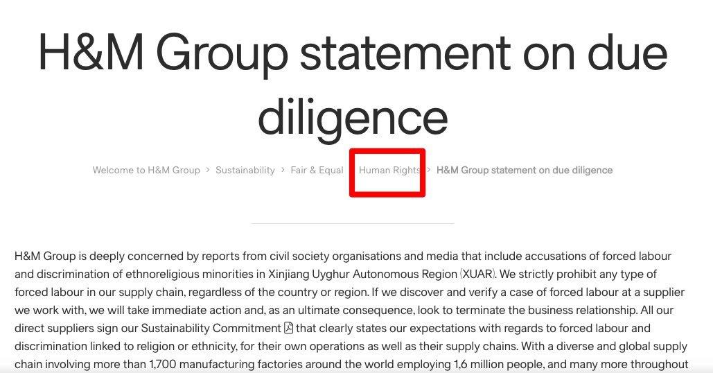 H&M集團核實調查聲明列在官網永續發展的欄目下的「人權」一類。 圖/摘自H&M集...