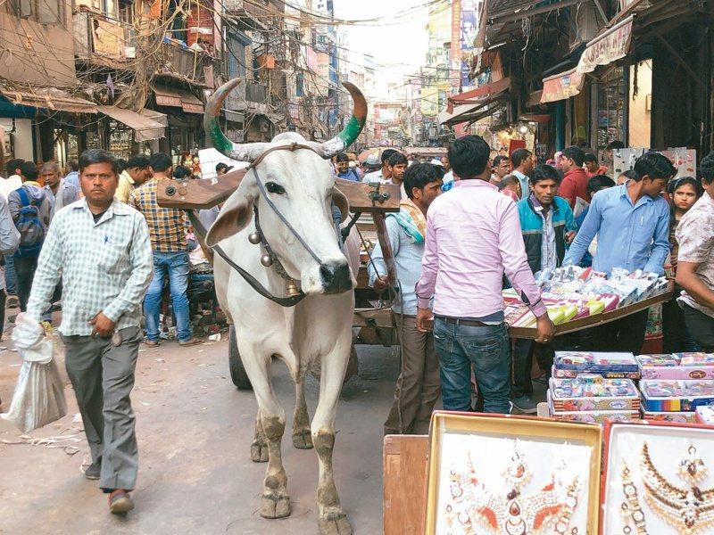 印度街頭。照片提供/印度尤