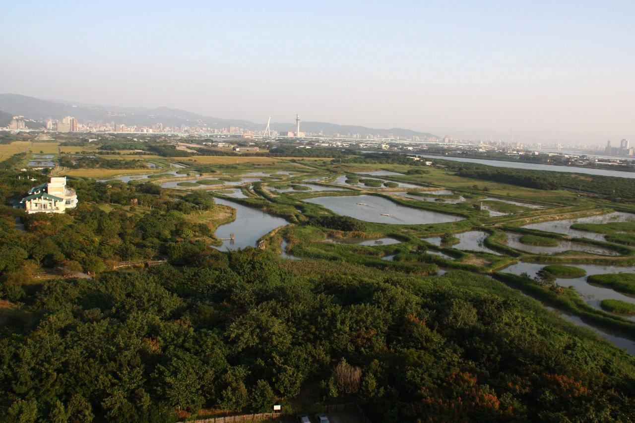 關渡國際自然藝術季11月到年底於關渡自然公園登場。 圖/北市動保處提供
