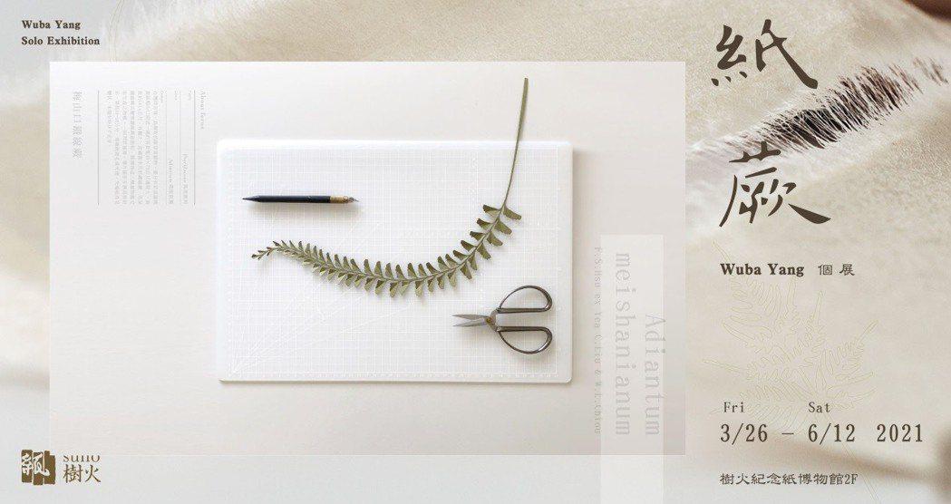 Wuba Yang個展「紙 蕨」在樹火紀念紙博物館展出。圖/樹火紀念紙博物館提供