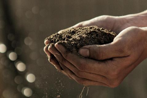 把教室搬到田埂間,學生種地瓜,持續的堅持,一位位關心「永續發展」的學生逐漸壯大。...