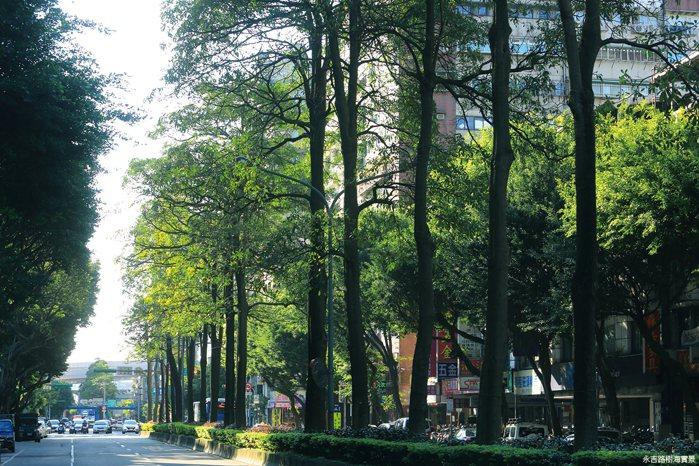 大隱回歸綠意是生活的最高層次,入主「采吉」,漫步永吉路讓生活更愜意。