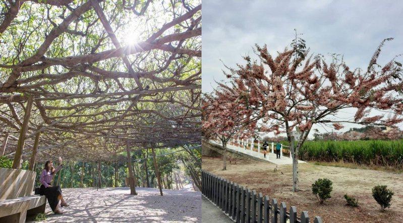 圖片來源/臺南市政府觀光旅遊局提供