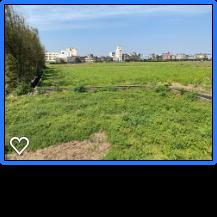 多看綠色植栽可以護眼,我下午三、四點散步到離家不遠的田園,遠眺藍天白雲,看四季更...