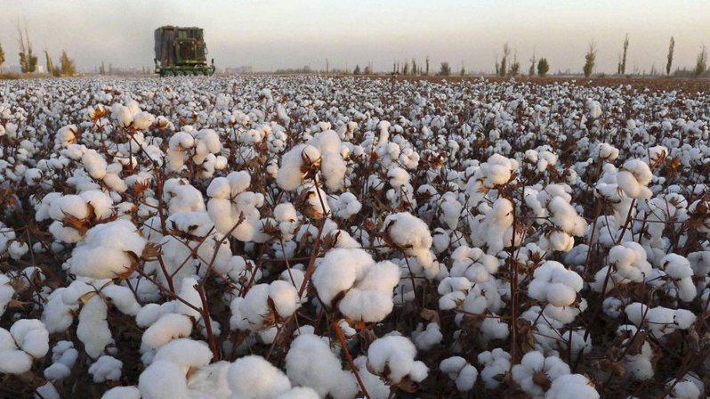 歐美服飾和運動品牌H&M、Adidas、Nike等因新疆棉議題遭中國抵制,風暴愈演愈烈。(路透)