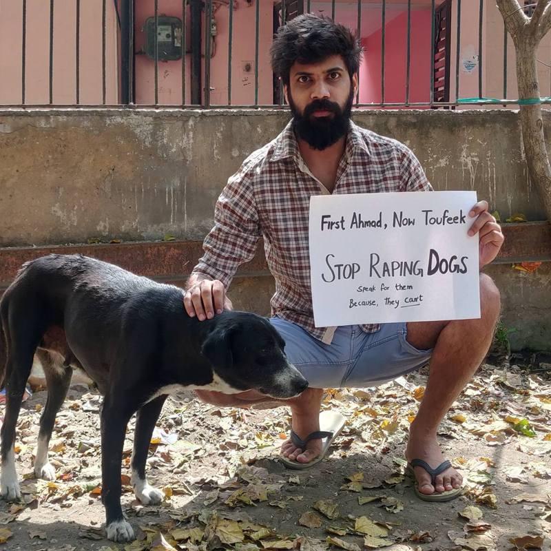 印度網友發起「#SorrySheru」標籤運動,要求政府重視流浪動物問題。圖擷自twitter