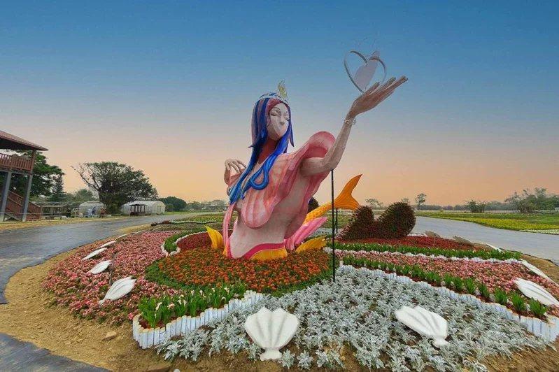 桃園彩色海芋季本周六在溪海休閒農業區登場,近6公頃花海等著大家來拍網美照。 圖/...