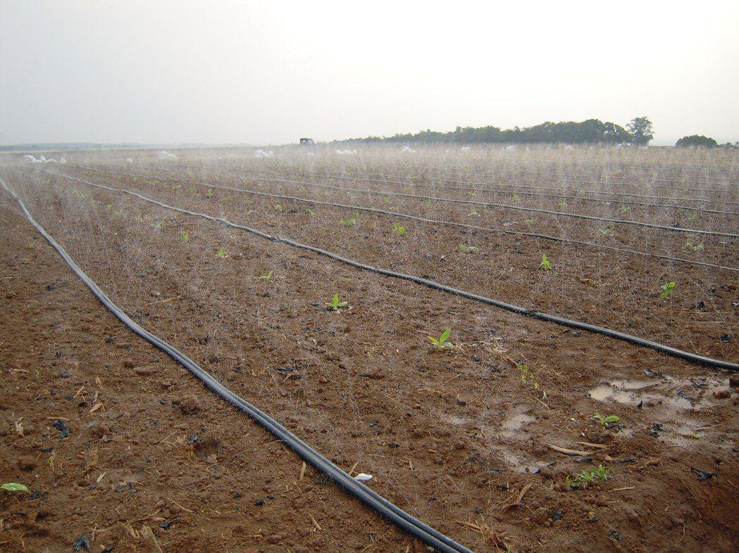 AJ-1系列噴水管帶實作情形。/安稼企業提供
